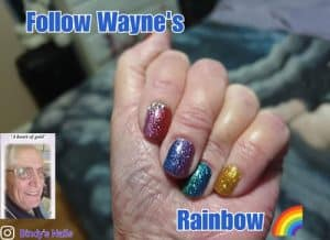 Bindy's Nails Follow Wayne's Rainbow Nail Polish Wrap